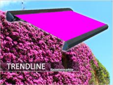 Kassettenmarkise TRENDLINE