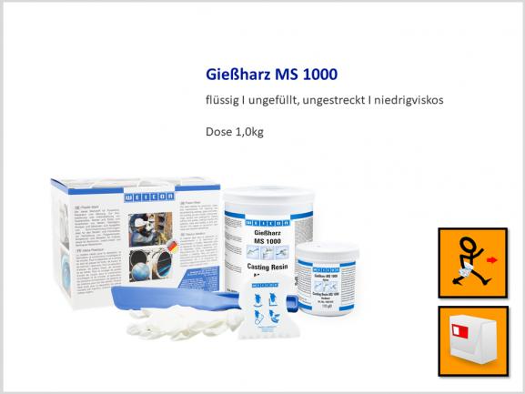 Gießharz MS 1000